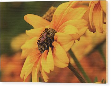 Wood Print featuring the photograph Yellow Dark by Mary Jo Allen