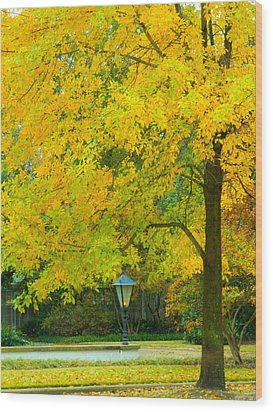 Yellow Drapes Wood Print