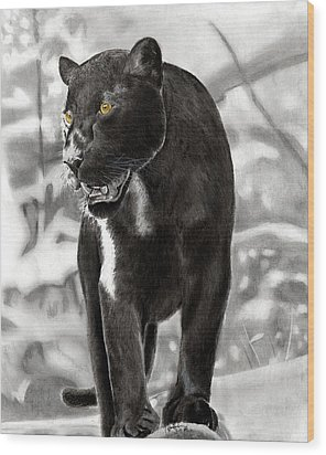 Yellow Eyes Wood Print