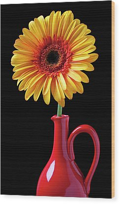 Yellow Fancy Daisy In Red Vase Wood Print by Garry Gay
