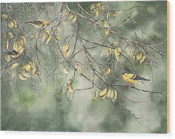 Yellow Finch Wood Print by Mary McCullah