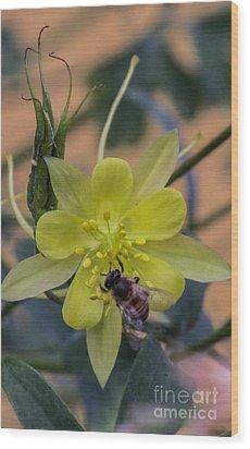 Yellow Flower 5 Wood Print