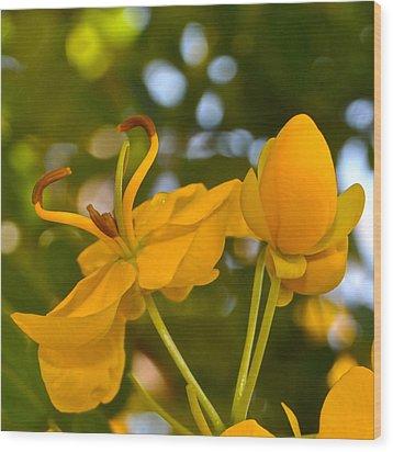 Yellow Flower Wood Print by Lori Kesten