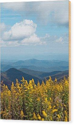 Yellow Flowers Along The Blue Ridge Mountains Wood Print by Kim Fearheiley