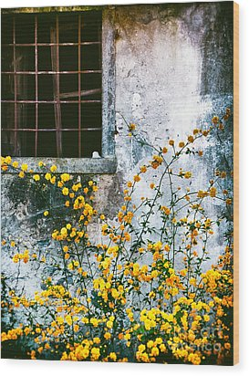 Wood Print featuring the photograph Yellow Flowers And Window by Silvia Ganora