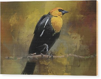 Wood Print featuring the photograph Yellow-headed Blackbird by Donna Kennedy