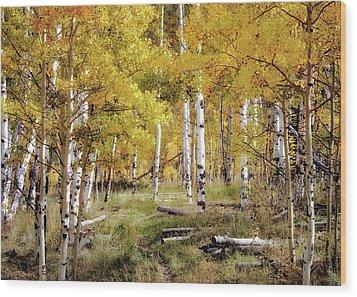 Yellow Heaven Wood Print by Jim Hill