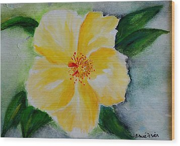 Yellow Hibiscus Wood Print by Jamie Frier