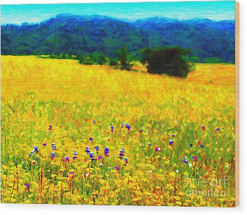 Yellow Hills Wood Print by Wingsdomain Art and Photography