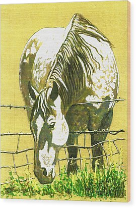 Yellow Horse Wood Print