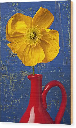 Yellow Iceland Poppy Red Pitcher Wood Print by Garry Gay