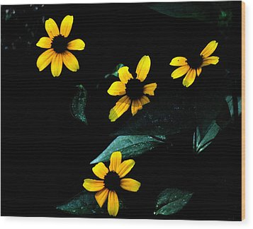 Wood Print featuring the photograph Yellow by Laura DAddona