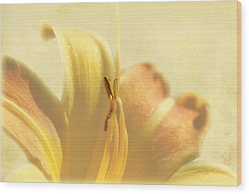 Yellow Lily Wood Print by Gary Smith