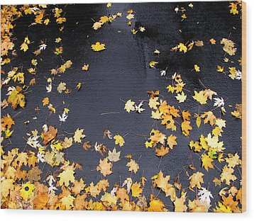 Yellow Maple Leaves On Pavement  Wood Print by Lyle Crump