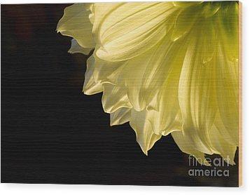 Yellow On Black Wood Print by Ronald Hoggard