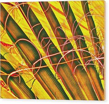 Yellow Palm Fun Wood Print by Gwyn Newcombe