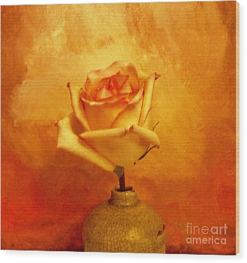 Yellow Red Orange Tipped Rose Wood Print by Marsha Heiken