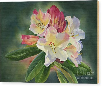 Yellow Rhododendron Dark Background Wood Print by Sharon Freeman