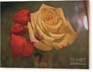 Wood Print featuring the photograph Yellow Rose And Chinese Lanterns by Diana Mary Sharpton