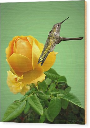 Yellow Rose And Hummingbird 2 Wood Print by Joyce Dickens