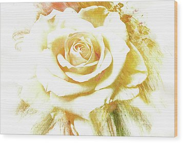 Wood Print featuring the photograph yellow Rose by Athala Carole Bruckner