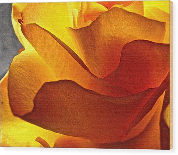 Wood Print featuring the photograph Yellow Rose In The Sun by Lori Miller
