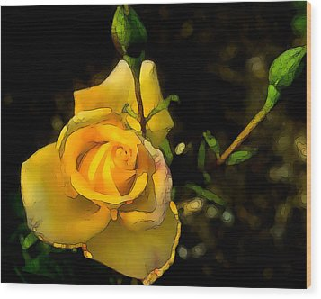 Yellow Rose 2 Wood Print