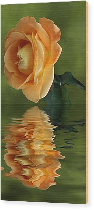 Wood Print featuring the photograph Yellow Rose by Rick Friedle