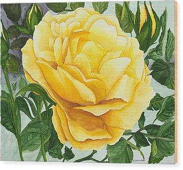 Yellow Rose Wood Print by Robert Thomaston