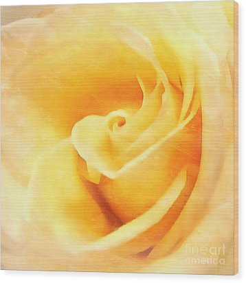 Wood Print featuring the photograph Yellow Rose - Sweet Whispers by Janine Riley