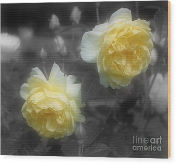 Yellow Roses Partial Color Wood Print