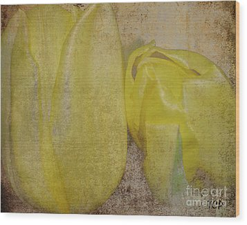Wood Print featuring the photograph Yellow Strands by Traci Cottingham