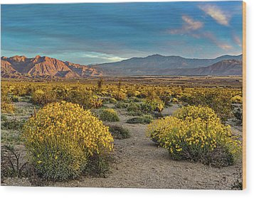 Wood Print featuring the photograph Yellow Sunrise by Peter Tellone