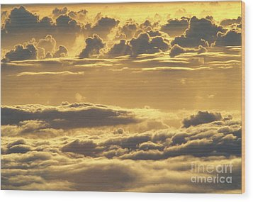 Yellow Sunset Wood Print by Carl Shaneff - Printscapes