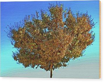 Yellow Tree Blue Sky Wood Print