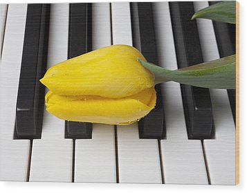 Yellow Tulip On Piano Keys Wood Print by Garry Gay