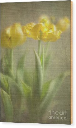 Wood Print featuring the photograph Yellow Tulips by Elena Nosyreva