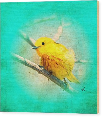 Wood Print featuring the photograph Yellow Warbler by John Wills