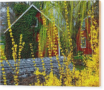 Yellow Weeds Wood Print by Michael L Kimble