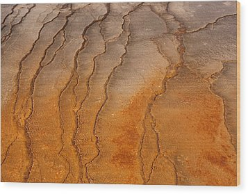 Yellowstone 2530 Wood Print