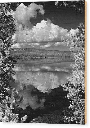 Yellowstone Lake Wood Print by Diane E Berry