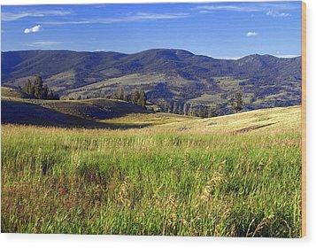 Yellowstone Landscape 3 Wood Print by Marty Koch