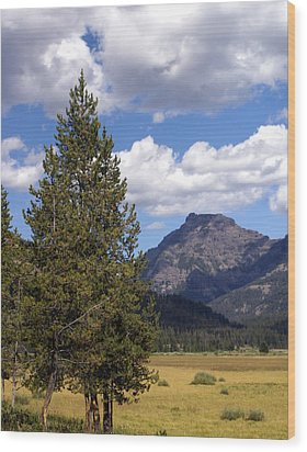Yellowstone Landscape Wood Print by Marty Koch