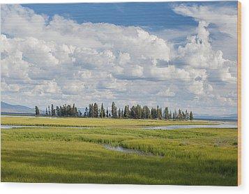 Yellowstone Meadow Wood Print