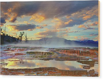 Yellowstone National Park-mammoth Hot Springs Wood Print by Kevin McNeal