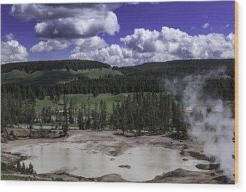 Wood Print featuring the photograph Yellowstone Tar Pits by Jason Moynihan