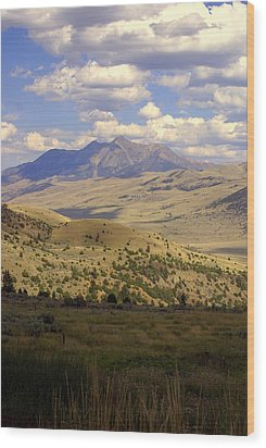 Yellowstone View Wood Print by Marty Koch