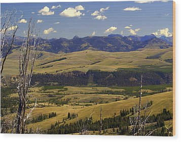 Yellowstone Vista Wood Print by Marty Koch