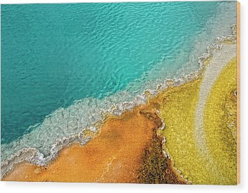 Yellowstone West Thumb Thermal Pool Close-up Wood Print by Bill Wight CA
