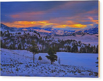 Yellowstone Winter Morning Wood Print by Greg Norrell